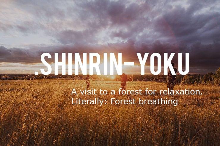 Shinrin-yoku will make you happier
