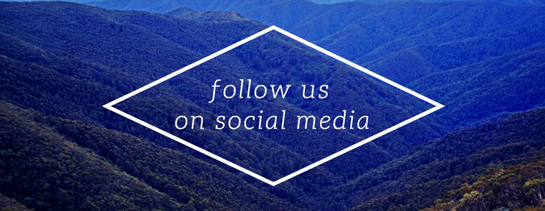 Bios Urn Social Media Networks