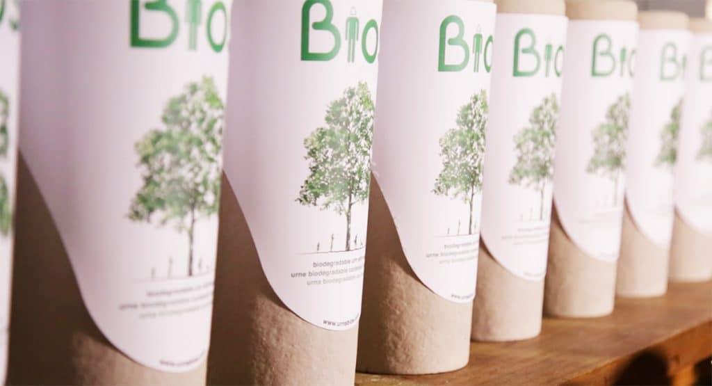 Bios Urn Biodegradable Urn