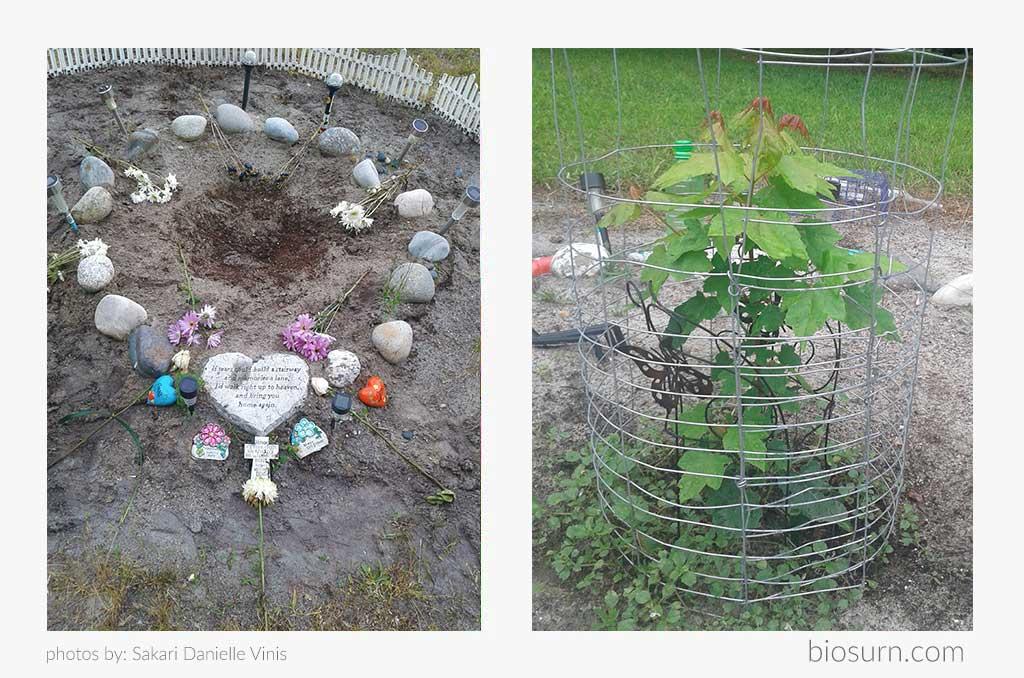 Scott Elkman's Oak biodegradable urn Bios Urn story