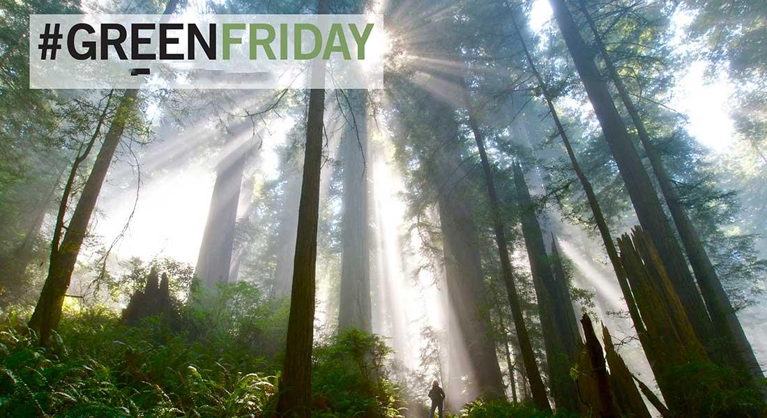 Together let´s change Black Fridayto Green Friday