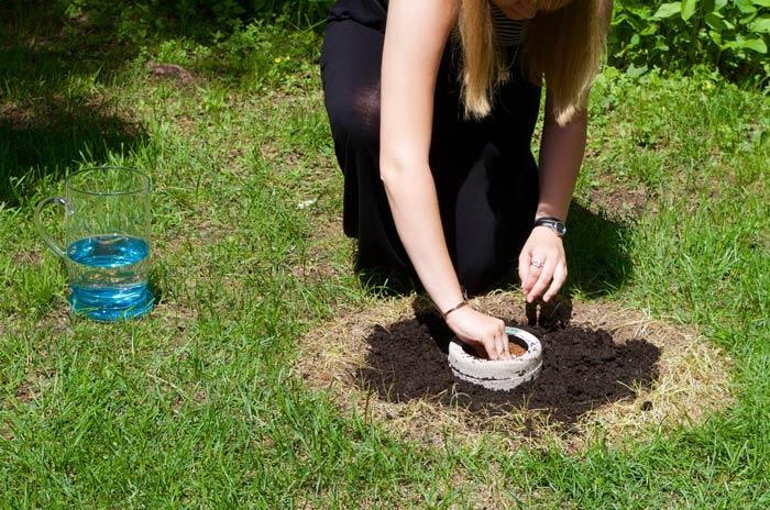 Bios Urn Blog: Human composting / Compost humain