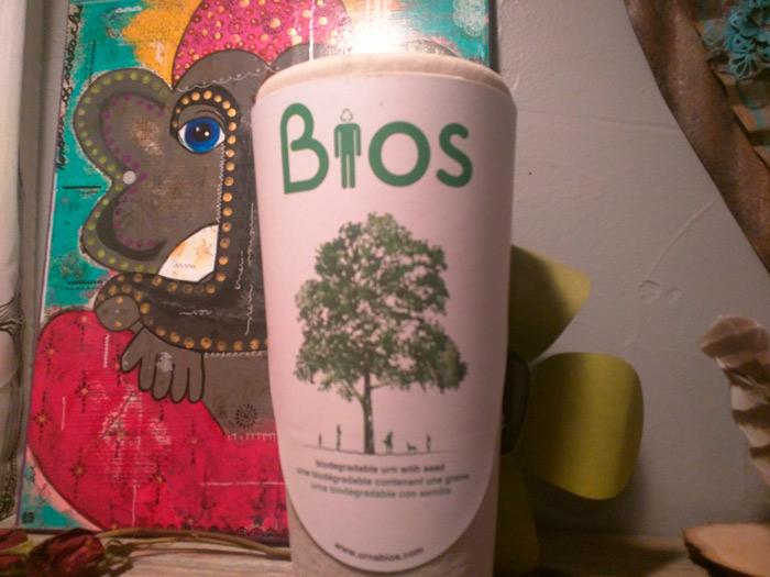 Bios Urn Blog: My Bios Story by Ryan