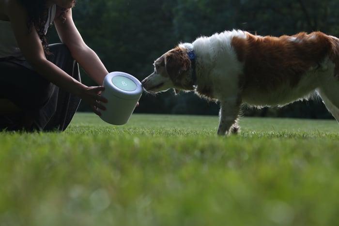 Urna Bios Pets ®, la urna para mascotas biodegradable para contener las cenizas de tu animal y transformarlo en un árbol, by Bios Urn®