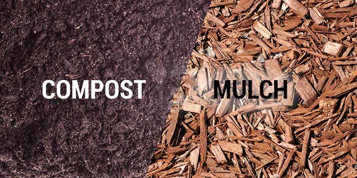 Bios Urn blog: Why Young Trees Need Mulch And How To Make Your Own! / Blog Urne Bios: Pourquoi Les Arbres Ont Besoin De Paillis et Comment Le Faire Chez Soi !