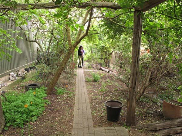 Bios Urn Blog: The rise of permaculture / Blog Urna Bios: El auge de la permacultura